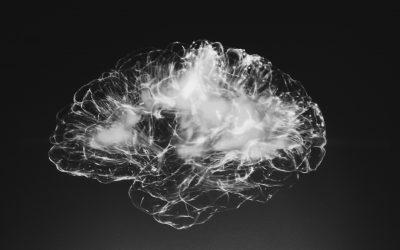 Kun je je brein veranderen?